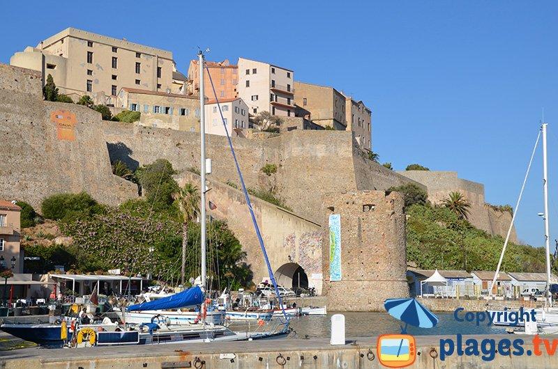 Citadelle de Calvi depuis le port