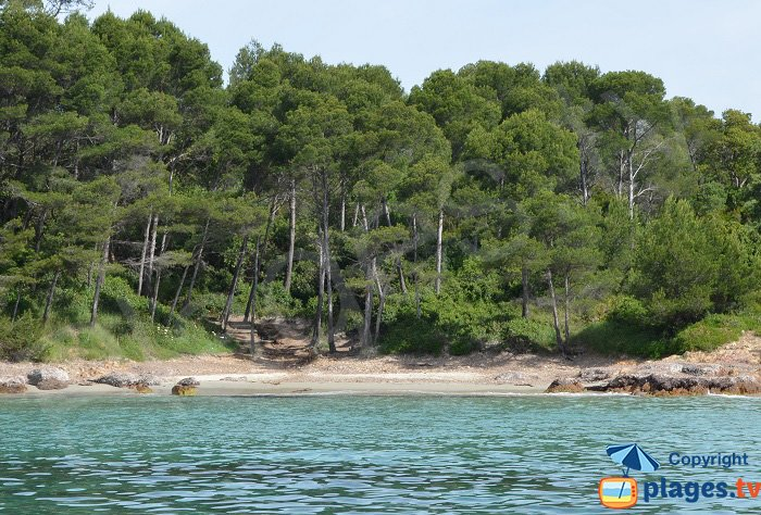 Creek of Cap Léoube - a confidential cove in southern France