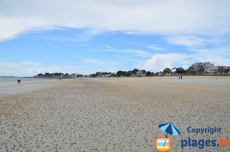 Grande plage de Carnac à marée basse