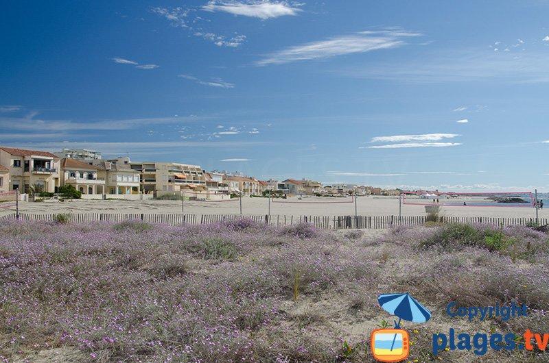 Carnon : le bord de mer et sa plage du centre