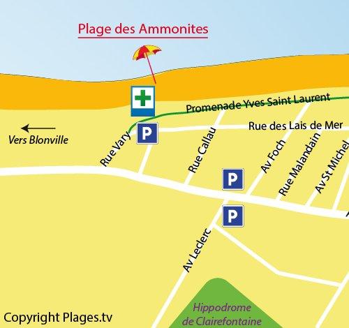 Carte de la plage des Ammonites à Bénerville sur Mer (14)