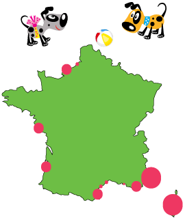 Map of dog-friendly beaches in France