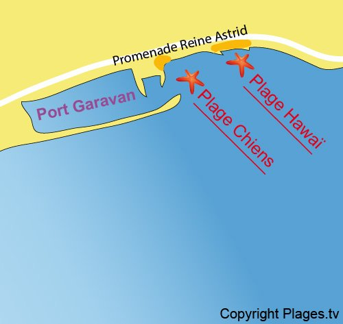 Map of the beach for dogs in Menton