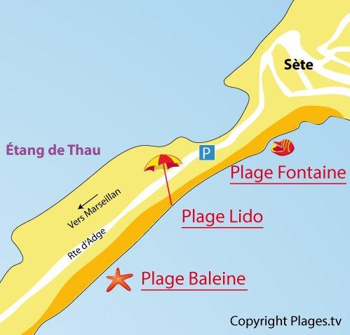 Plan de la plage du Lido à Sète