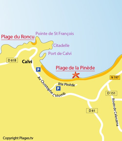Map of the Pinède beach in Calvi