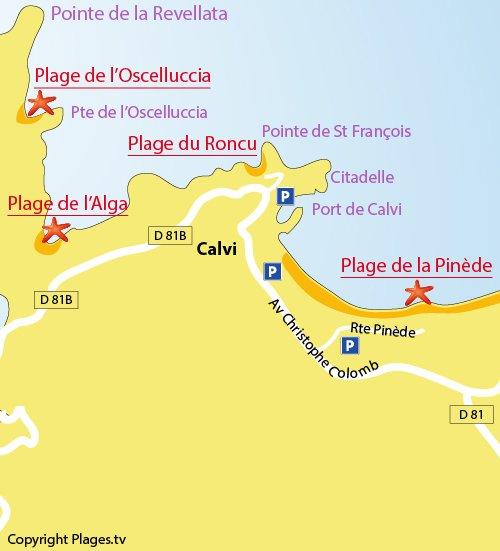 Plan de la plage du Roncu - Calvi