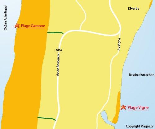 Carte de la plage de la Vigne au Cap Ferret