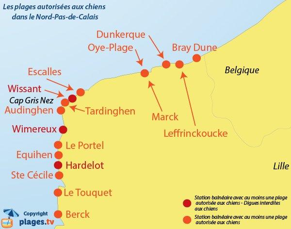 Carte des plages autorisées aux chiens dans le Nord Pas de Calais