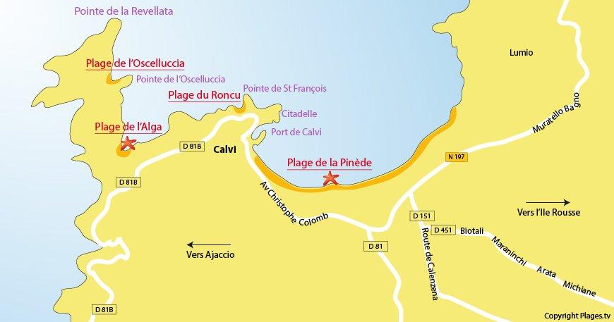 Carte des plages de Calvi - Corse