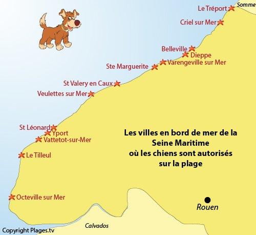 Carte des plages autorisés aux chiens en Seine Maritime