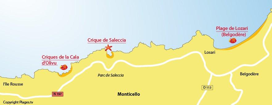 Carte des plages de Monticello en Corse