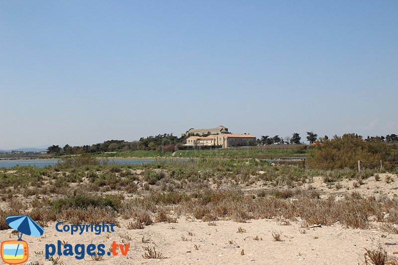 Cathédrale de Maguelone à proximité de la plage