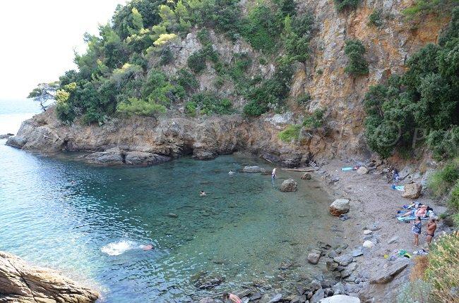 Calanque à Cavalaire sur Mer - Cron