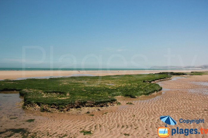Plage du Chatelet à marée basse: idéal pour la baignade et la pêche