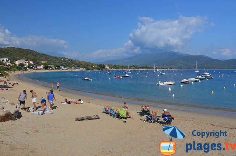 Porto Pollo : une petite station balnéaire peu connue en Corse