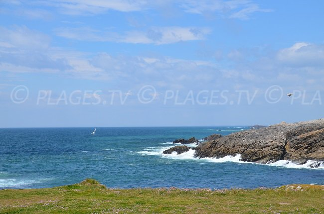 Untamed coast of Quiberon in France