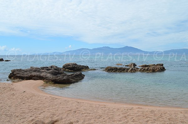Crique au nord d'Isolella - Pietrosella