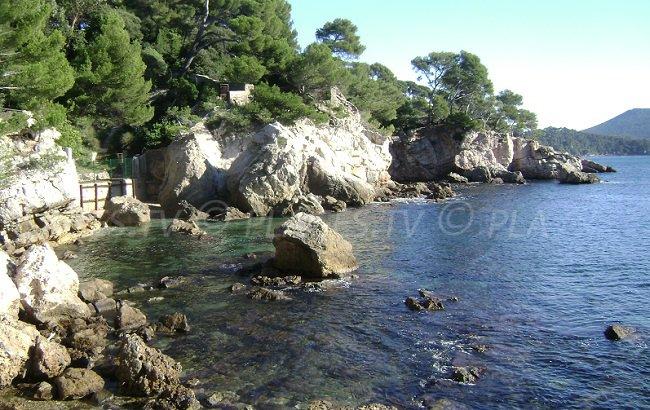 Crique sur le sentier du littoral à Toulon