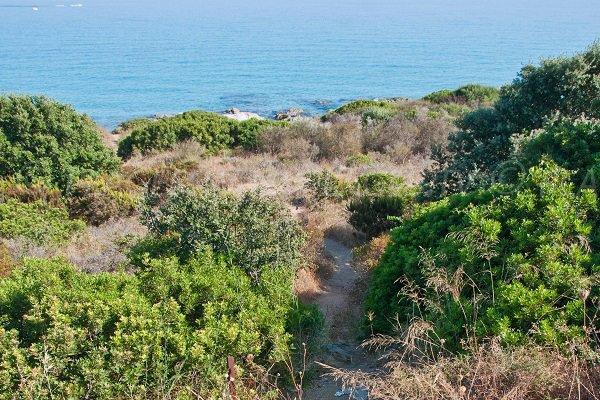 Access to Cala d'Olivu - Corsica