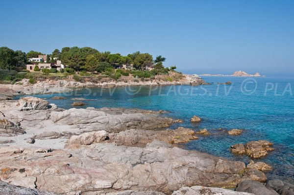 Cala d'Olivu and view on Ile Rousse in Corsica