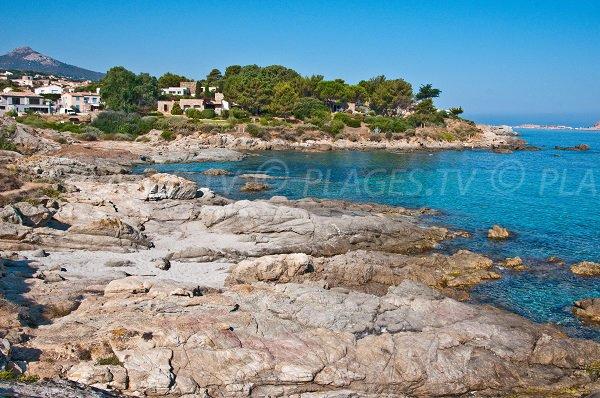 Foto della Cala d'Olivu in Corsica - Monticello