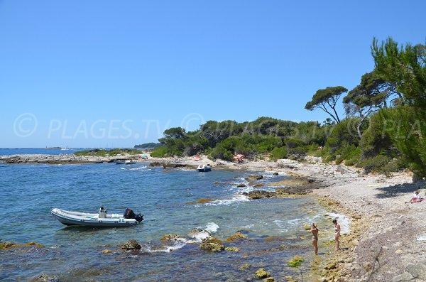 Photo des plages du Carbonel sur les Iles de Lérins