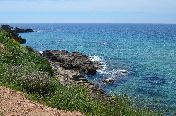 Environnement de la plage du Castellu à Sagone