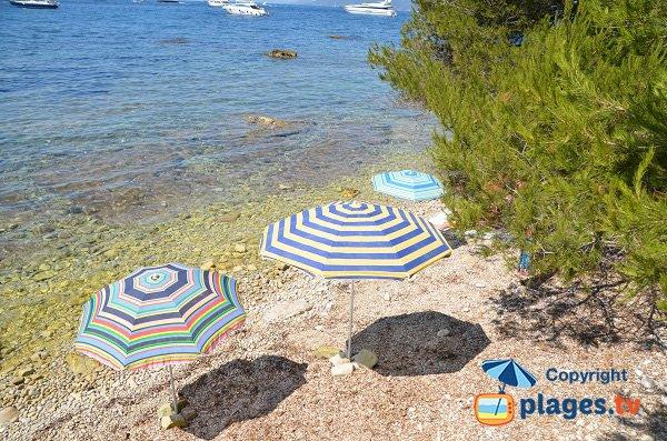 Stone beach - Ste Marguerite island - Cannes