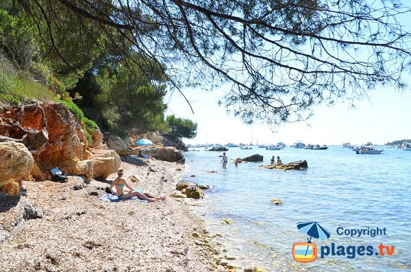 South lerins beach - Les Cattats
