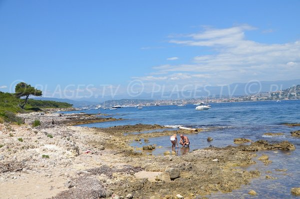 Beach in Lerins island facing Juan les Pins