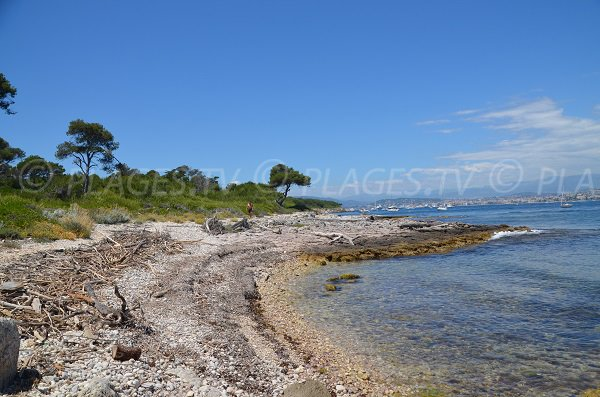 Photo of Convention beach - Sainte Marguerite island - Lerins