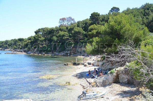 Shaded cove near the cemetery of the Iles de Lérins