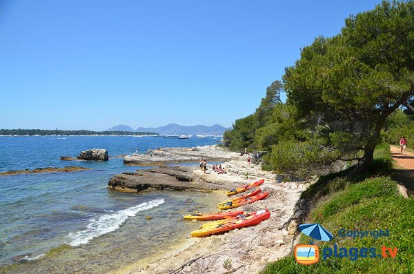 Four beach in Lerins island - Cannes