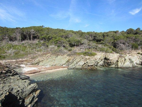 Spiaggia della Galère a Porquerolles