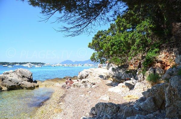 Grand Jardin Cove - Lérins island