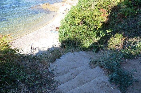 Accès à la crique des Graniers de St Tropez