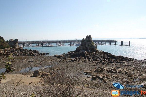 Vue sur le port de plaisance de Roscoff depuis le jardin exotique