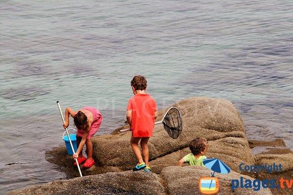 Pêche sur la plage de Kerlosquen à Fouesnant