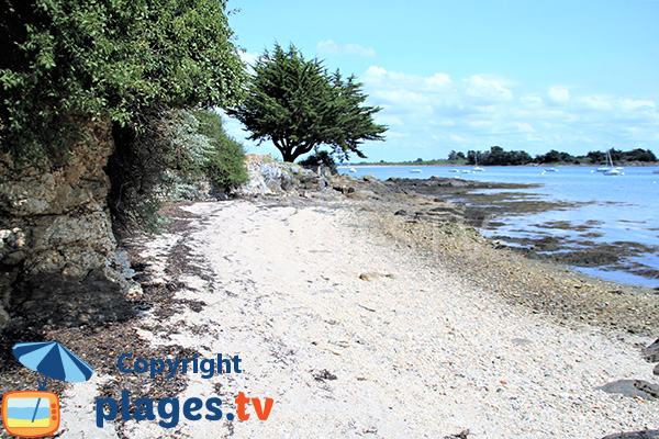 presqu'île de Bilhervé depuis une crique d'Arz