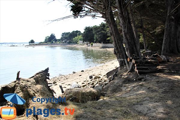 Crique sauvage sur l'ile d'Arz