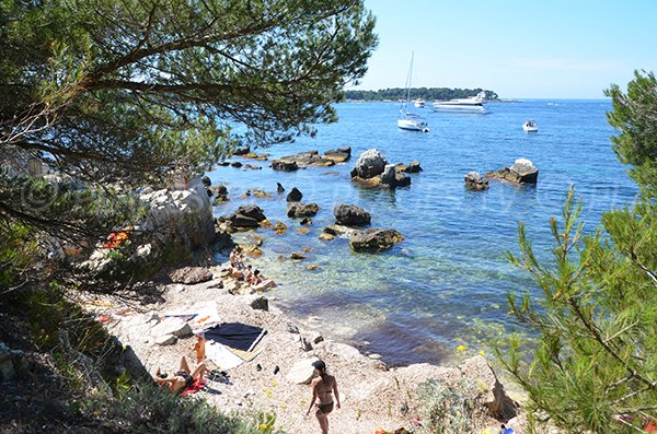 Photo of Laoute cove - Lerins island (Marguerite)