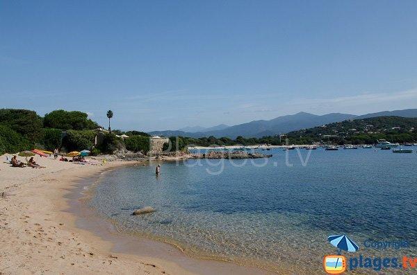 Crique de Medea à Isolella