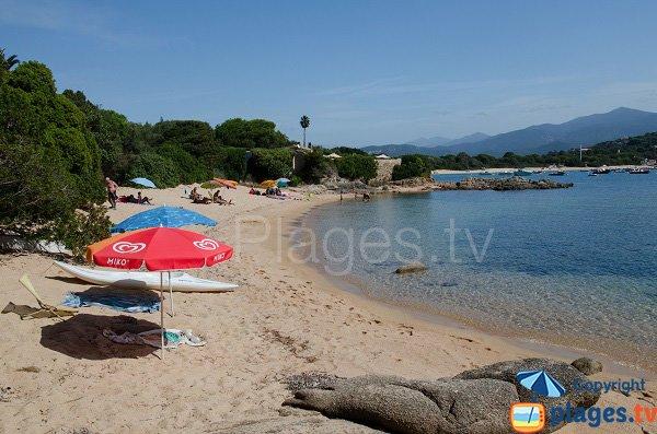 Photo de la crique de Medea en Corse - Isolella