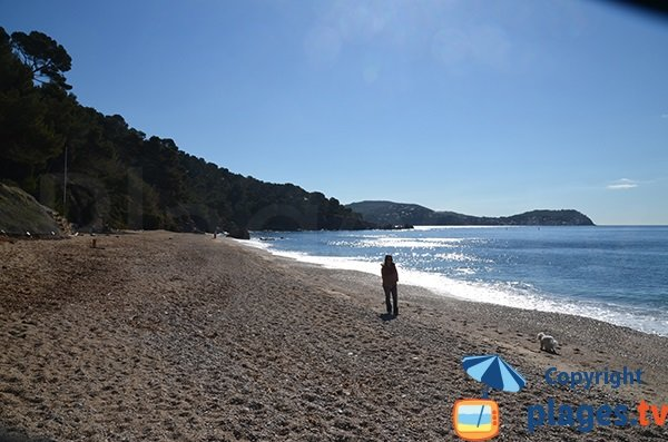 Photo de la plage naturiste du Pradet