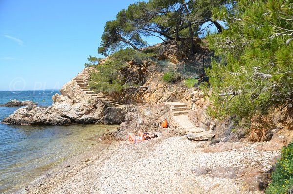Wild creek in La Londe les Maures
