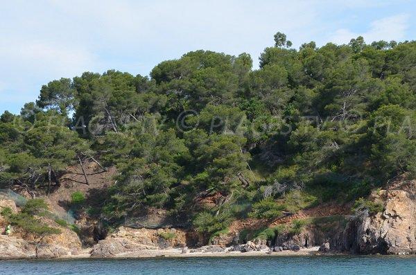 Crique du Pellegrin de La Londe vue de la mer