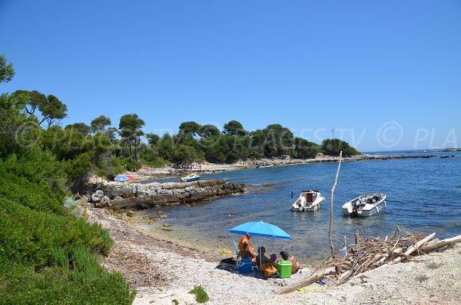 Crique sur la pointe Carbonel sur l'île Sainte Marguerite
