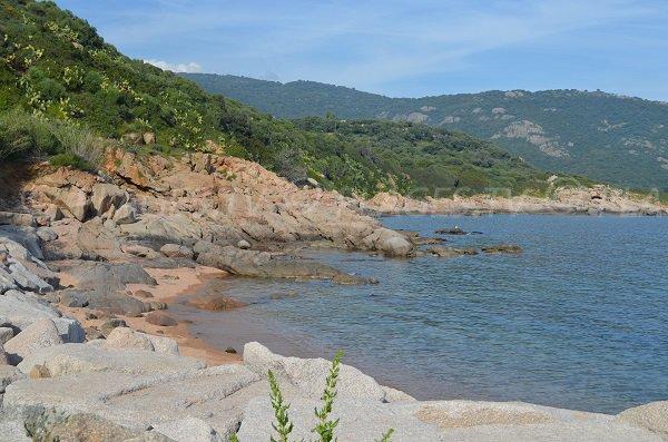 Port cove in Cargèse - Corsica