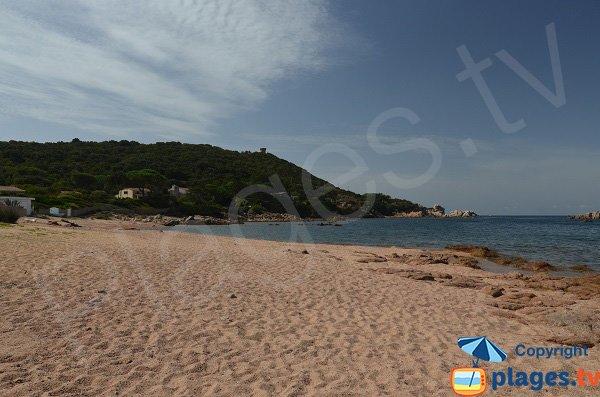 Sand beach in Isolella - Dentis - Corsica