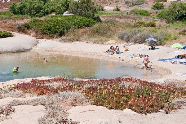 Crique secrète à proximité de Calvi - Punta di Spanu